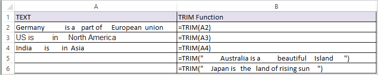 TRIM Function in Excel 1
